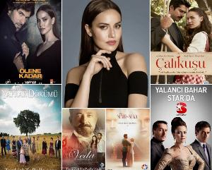 The Best Tv Series of Fahriye Evcen