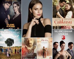 The Best Tv Series of Fahriye Evcen