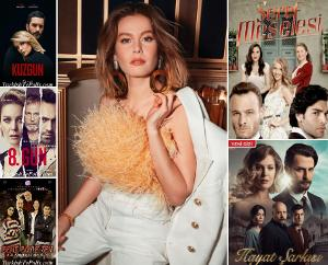 The Best Tv Series of Burcu Biricik